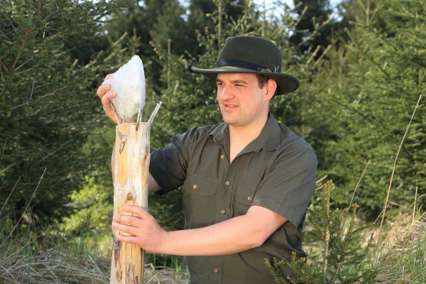 Förster-Wald-Waldarbeiter-Landesforst-Brennholz