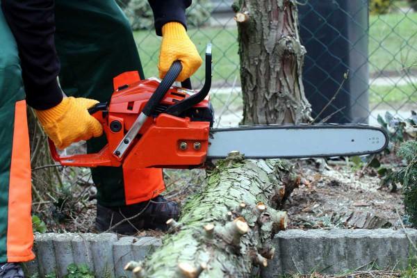Welche-Kettensäge-ist-die-Richtige-für-welchen-Bedarf-Motorsäge-Brennholz-Schutzausrüstung